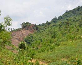 Có thể khiếu kiện khi bị bồi thường nhầm loại đất?